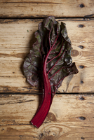 Still life of ruby chard leaf on wooden table. London, England, United Kingdom