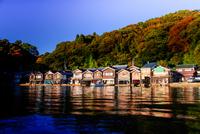 Funaya (Boat Houses) of Ine 20073000768| 写真素材・ストックフォト・画像・イラスト素材|アマナイメージズ