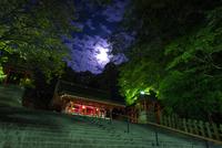 Fushimi Inari-taisha 20073000824| 写真素材・ストックフォト・画像・イラスト素材|アマナイメージズ