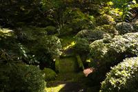 Shoyo-en Garden