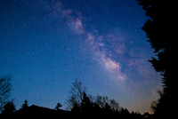 Stars in Ogushi