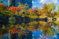 Tokyo Midtown 20073001138| 写真素材・ストックフォト・画像・イラスト素材|アマナイメージズ