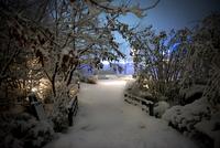 Hinokich'snow 20073001168| 写真素材・ストックフォト・画像・イラスト素材|アマナイメージズ