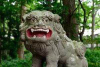 Towada Shrine 20073001491| 写真素材・ストックフォト・画像・イラスト素材|アマナイメージズ
