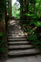 Towada Shrine 20073001493| 写真素材・ストックフォト・画像・イラスト素材|アマナイメージズ