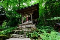 Towada Shrine 20073001497| 写真素材・ストックフォト・画像・イラスト素材|アマナイメージズ