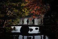 Rikugien Garden 20073001577| 写真素材・ストックフォト・画像・イラスト素材|アマナイメージズ