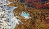 colorful forest 20074000094| 写真素材・ストックフォト・画像・イラスト素材|アマナイメージズ