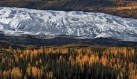 glacier and the forest 20074000103  写真素材・ストックフォト・画像・イラスト素材 アマナイメージズ