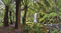 waterfall in the forest 20074000134  写真素材・ストックフォト・画像・イラスト素材 アマナイメージズ