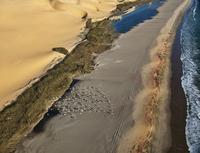 sand dunes and coastline