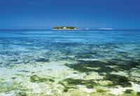 sea and the island