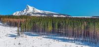 winter, trees, mountains