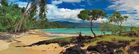 beach and palm trees 20074000369| 写真素材・ストックフォト・画像・イラスト素材|アマナイメージズ