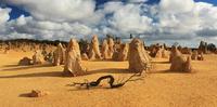 desert sculptures of the Pinnacles