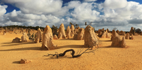 desert sculptures of the Pinnacles 20074000416| 写真素材・ストックフォト・画像・イラスト素材|アマナイメージズ