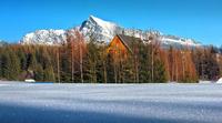 winter, mountain, trees, hutt