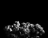 Roses_B&W.tif