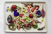 Vegan pearl barley salad with fresh fava beans, mixed greens, strawberries and a sweet tahini dressing