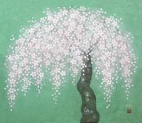 しだれ桜 20084000016| 写真素材・ストックフォト・画像・イラスト素材|アマナイメージズ