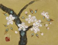 桜 20084000024| 写真素材・ストックフォト・画像・イラスト素材|アマナイメージズ