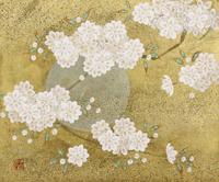 八重桜 20084000066| 写真素材・ストックフォト・画像・イラスト素材|アマナイメージズ