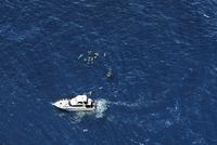 Boat at Ningaloo Reef in Australia, Aerial view 20085006593| 写真素材・ストックフォト・画像・イラスト素材|アマナイメージズ