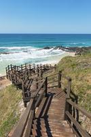 Path leading to the sea, Fraser Island, Queensland, Australia 20088000297| 写真素材・ストックフォト・画像・イラスト素材|アマナイメージズ
