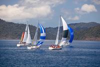 Australia, Queensland, Whitsundays.  Yacht racing in the Whitsunday Passage during Hamilton Island Race Week. 20088011435| 写真素材・ストックフォト・画像・イラスト素材|アマナイメージズ