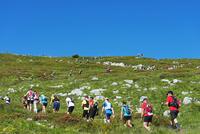 Europe, France, Haute Savoie, Rhone Alps, Chamonix, Chamonix trail running marathon 20088031888  写真素材・ストックフォト・画像・イラスト素材 アマナイメージズ