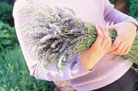 ラベンダーの花を抱えた女性