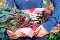 収穫した野菜を持つ女性の手元