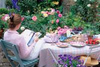 庭で本を読む女性