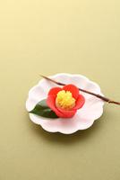 椿の和菓子 21002003757| 写真素材・ストックフォト・画像・イラスト素材|アマナイメージズ