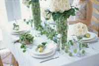 白いバラと姫リンゴを飾ったテーブル 21006000104| 写真素材・ストックフォト・画像・イラスト素材|アマナイメージズ