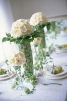 白いバラと姫リンゴを飾ったテーブル 21006000140| 写真素材・ストックフォト・画像・イラスト素材|アマナイメージズ