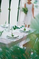 植物に囲まれた食卓