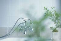 バスルームの蛇口と観葉植物