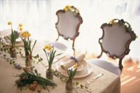 水仙の花を飾ったテーブルセッティング 21006000315A| 写真素材・ストックフォト・画像・イラスト素材|アマナイメージズ