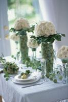 白いバラと姫リンゴを飾ったテーブル 21006000325A| 写真素材・ストックフォト・画像・イラスト素材|アマナイメージズ