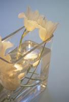 キャンドルを浮かべた器に活けた白いチューリップ 21007000727| 写真素材・ストックフォト・画像・イラスト素材|アマナイメージズ