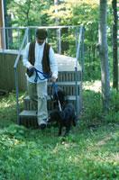 犬と男性 21007001145G| 写真素材・ストックフォト・画像・イラスト素材|アマナイメージズ