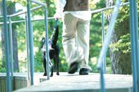 犬と男性 21007001146| 写真素材・ストックフォト・画像・イラスト素材|アマナイメージズ