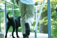 犬と男性 21007001146A| 写真素材・ストックフォト・画像・イラスト素材|アマナイメージズ