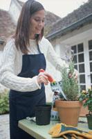 庭で鉢植えをする女性