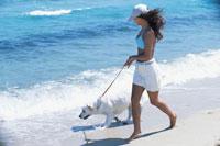 波打ち際を散歩する女性と犬