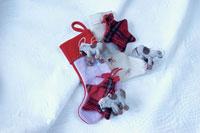 靴下とプレゼント 21008000179| 写真素材・ストックフォト・画像・イラスト素材|アマナイメージズ
