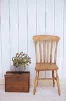 椅子と植物