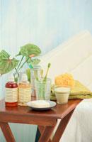 テーブルの上のバスグッズと植物 21008001626| 写真素材・ストックフォト・画像・イラスト素材|アマナイメージズ