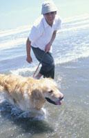 砂浜の犬(ゴールデンレトリーバー)と男性